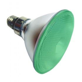 PAR38 Lamps